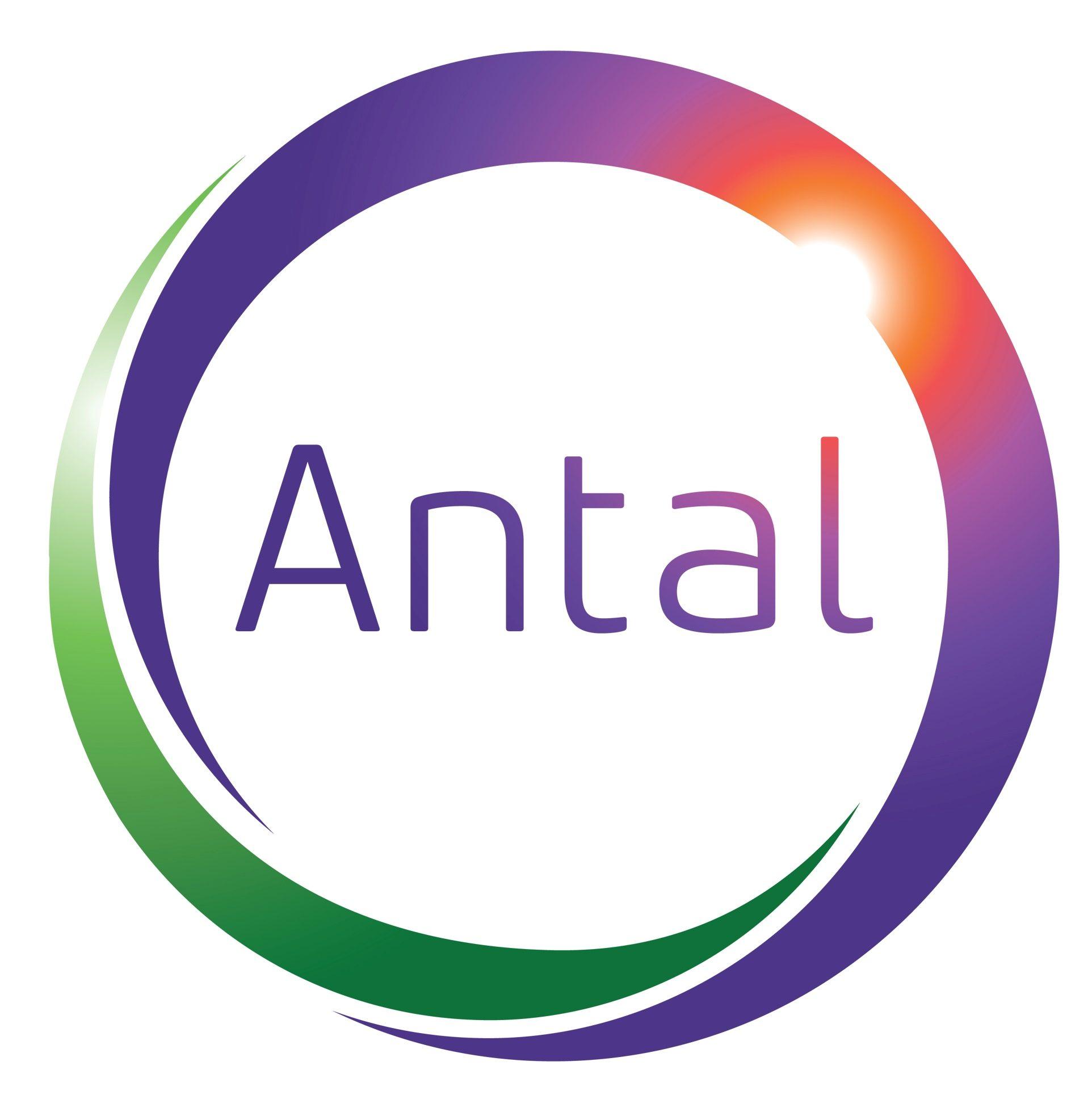 Antal India Executive Recruitment Blog.